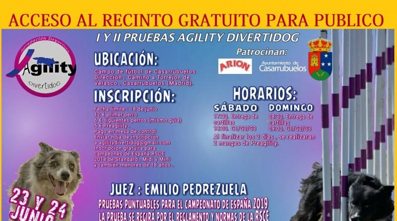 Agility-competicion-canina-Cartel-casarrubuelos-2
